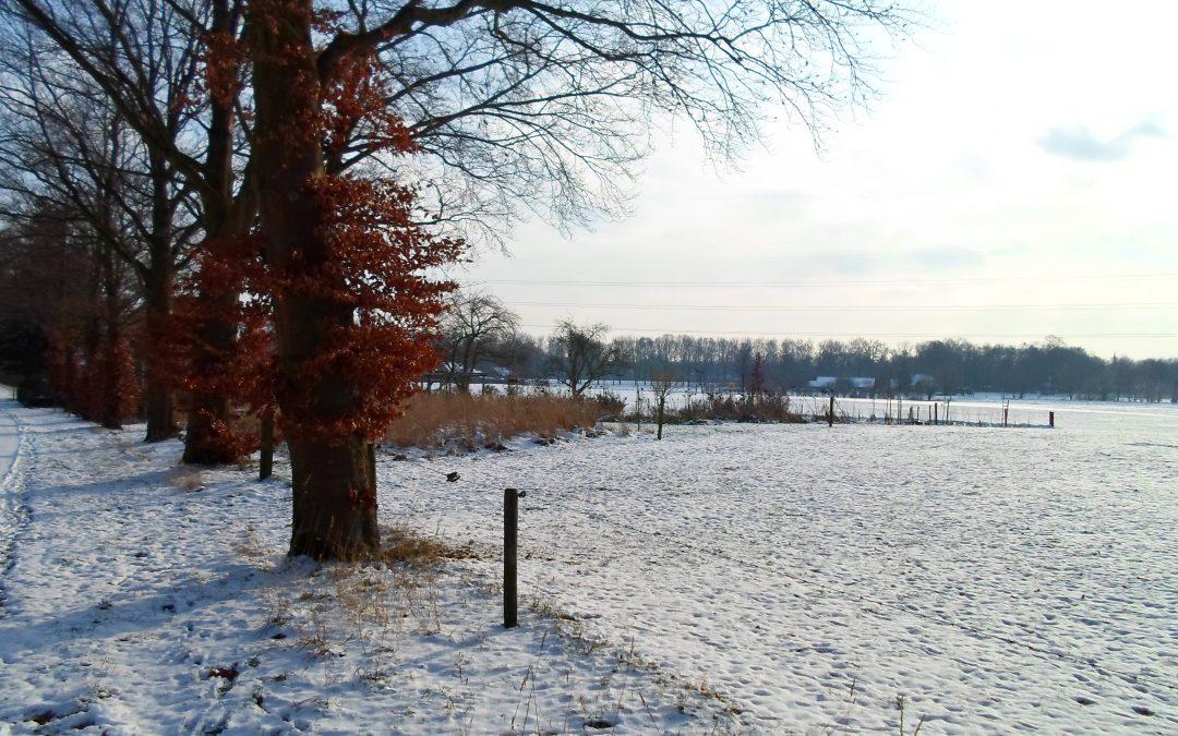 15e Winterwandelweekend